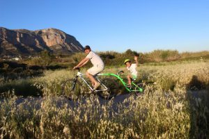 WeeRide Australia Bike Seat 6